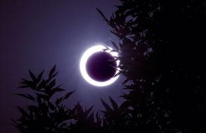 Black Moon Lilith – en elskerinde i ulveklæder er på vej