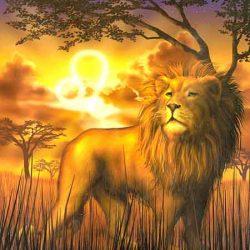 Løven og 1-tallet. It´s time to shine, baby :)