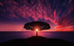 Astrologiske højdepunkter i dit liv