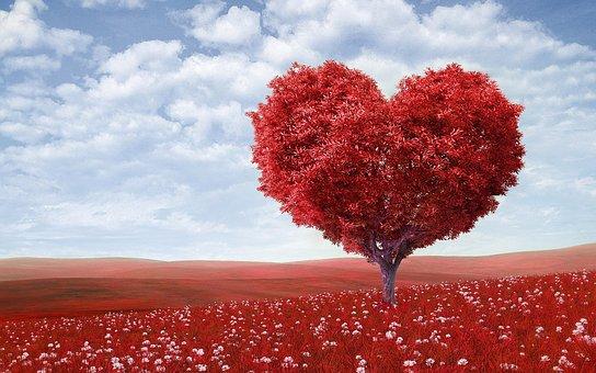 Kærlighed & Karma gruppe-event den 6. oktober 2019 er nu åben for tilmelding